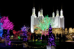 2016 National LDS Temple Christmas Lighting _101