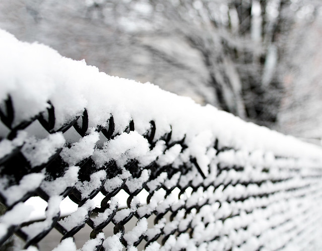 snow fence, of sorts