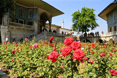 Topkapi Palace roses