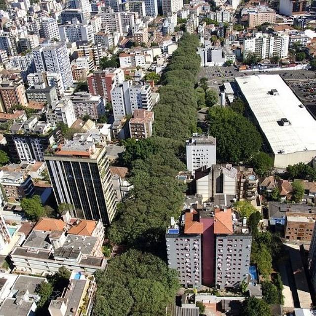 شارع Rua Goncalo de Carvalho في البرازيل أحد أجمل شوارع العالم بسبب الأشجار الجميلة المحيطة به.. #غرد_بصورة http://t.co/Knh8X5TRca