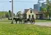 Amish Horse and Buggy, Andover, Ohio