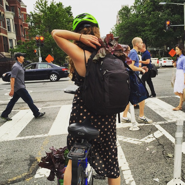 Biking with greens - it ain't easy #BikeDC