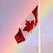Canadian Pride?