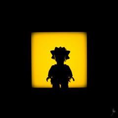 Shadow (31/100) - Lisa