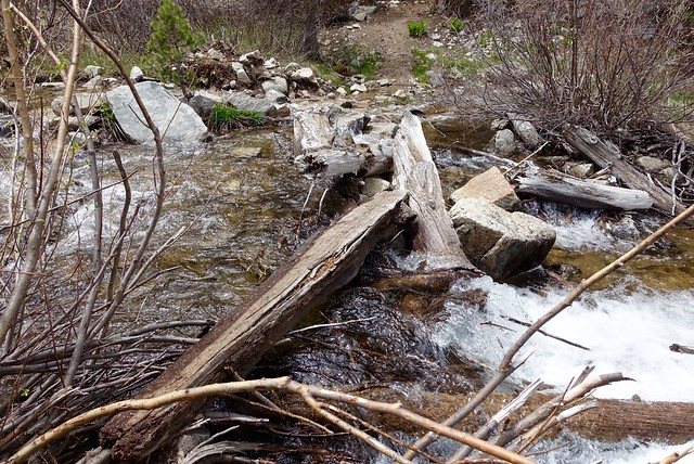 Another creek crossing, m797