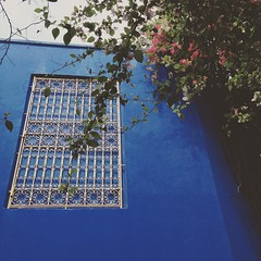I often feel that I can be better than what I am right now. I do. But I always feel #blue. Boring and very distant. Far from everyone else. #YSL Jardin Majorelle