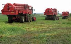 Pea Harvesters