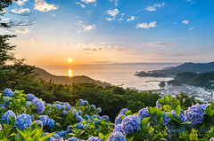Sunset at Hydrangea Hills 2015