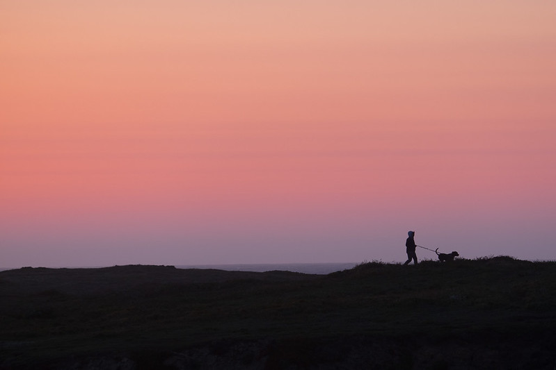 Sunset Dog and Owner