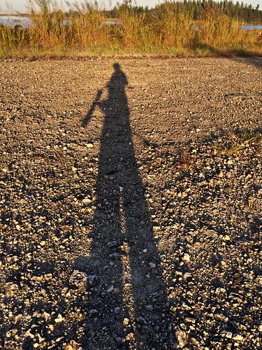 Shadow 2-20141113