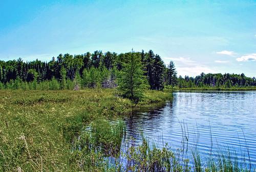 Wilson Lake State Natural Area
