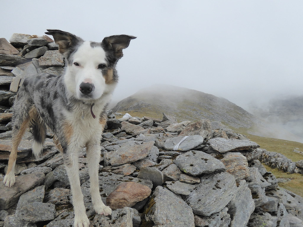 On Rois-Bheinn west summit