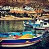 Finiki at #karpathos #karpathos #white #karpathos-island #pigadia #olympos #flowers #greece #greek  #nature #sunny #instalove #amoopi #afiartis #lefkos #instablue #greecestagram #sea #hellas #naturelovers #instagramhub #sunrise  #magic #sky #magical #ipho