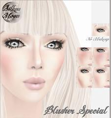 Silken Moon BlusherTMR Aug.