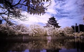 lau-dai-hiroshima