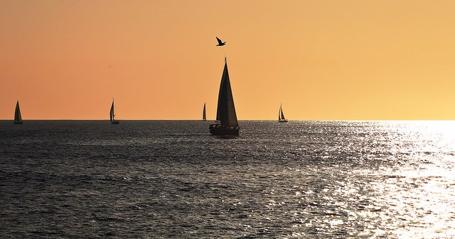 Sailing & flying - Tel-Aviv beach