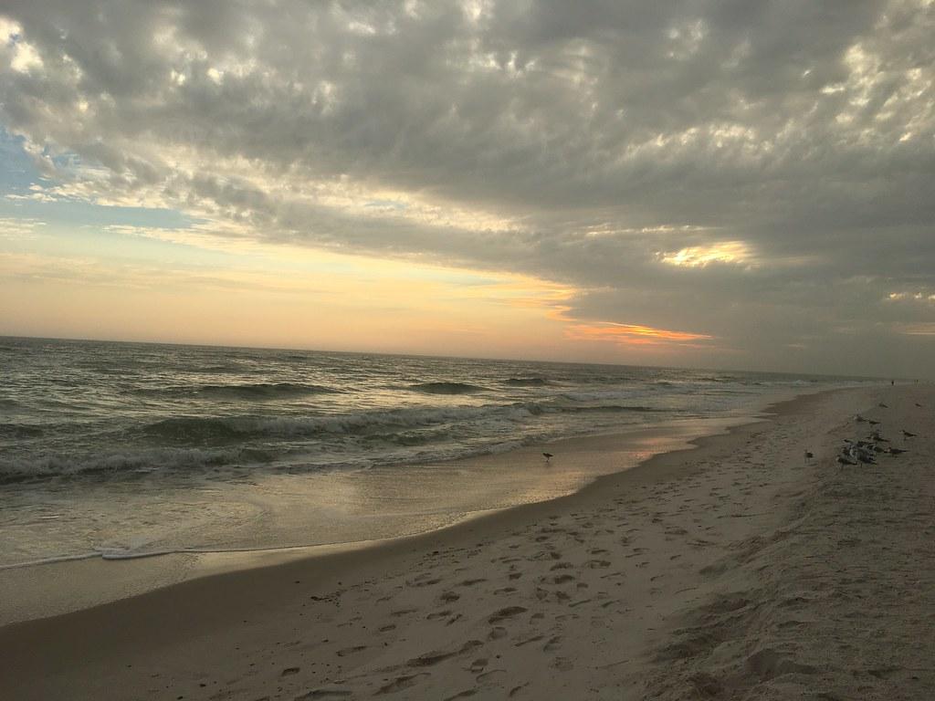 Gulf Shores Gulf Coast Alabama Tripcarta