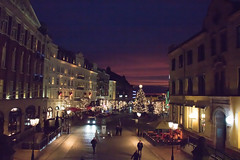 Christmas lights at dusk