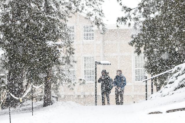 snowy_walk #snow #winter {Explore 1.26.2016}