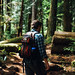 Willamette National Forest by patrick.brower