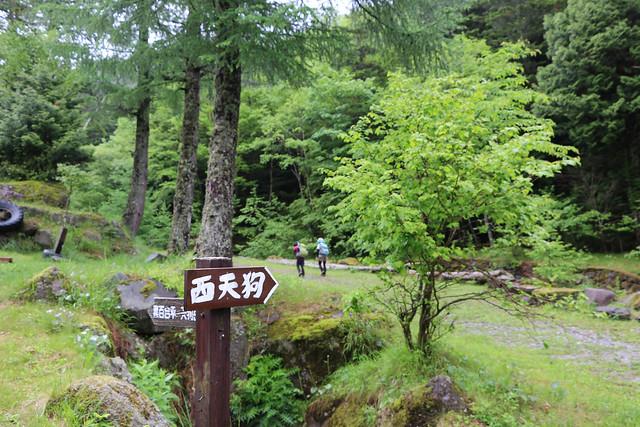 2014-06-29_00041_天狗岳.jpg