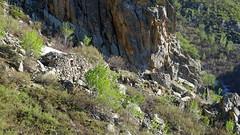 Les cabanes des curistes de Vetta di Muro