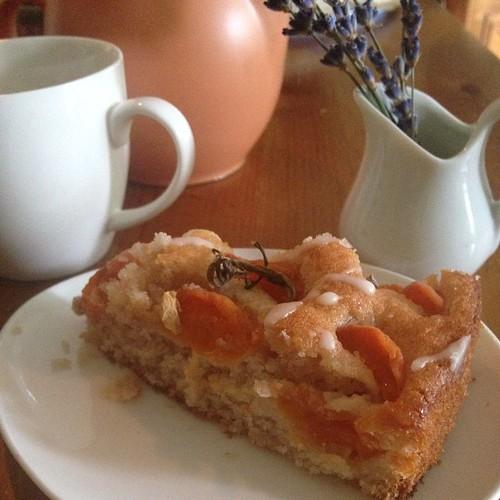 Apricot & Jasmine Tea Cake #Jasmine #Apricot