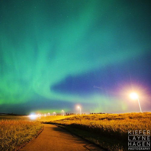 Northern lights on a path in St albert #nature #stars #sky #night #longexposure #alberta #astrophotography #astro #amazinglongexposure #nightsky #star #nightimages #cabin #canada #FramesCatcher #photo #yeg #photographer #fineart #landscape  #intothewild #
