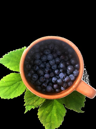 Blueberries are considered brain food