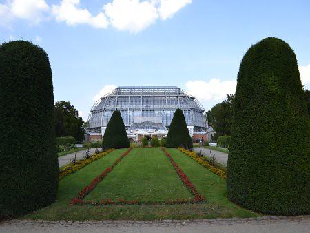Gradina Botanica 3 5 Recomandari turistice in Berlin