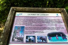 28-Info forêt de Lanmary - Photo of Sarliac-sur-l'Isle