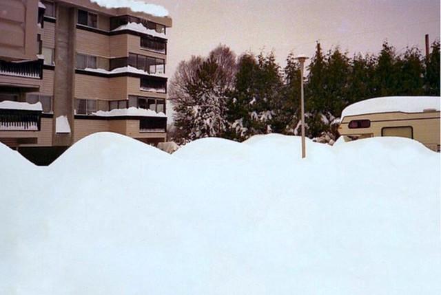 Buried cars. Photo evinqvist