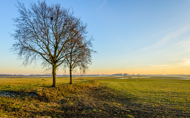 Wide Dutch polder landscape in autumn