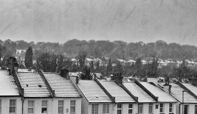 365 - Image 13 - Snow day...