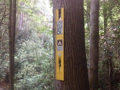 Low Gap Creek Sign