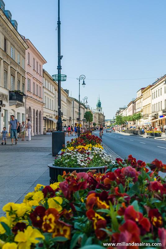 Jardineras a lo largo del paseo de la Krakowskie Przedmieście