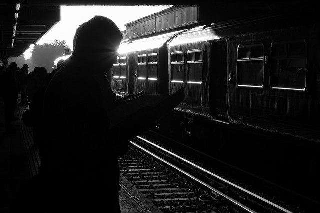 Rail traveller