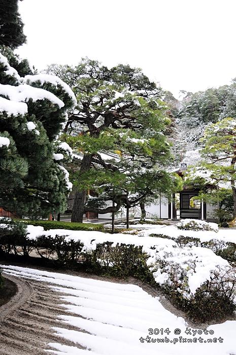 2014雪銀閣 (5).jpg
