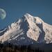 Mt. Hood taken from Powells Butte park in Portland by please follow me on https://500px.com/obrik