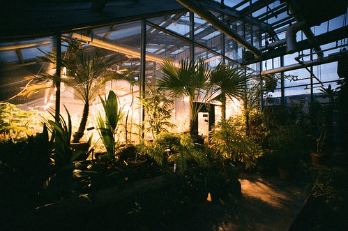 Greenhouse: UV Light