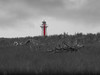 Phare Tragique / Tragic Lighthouse