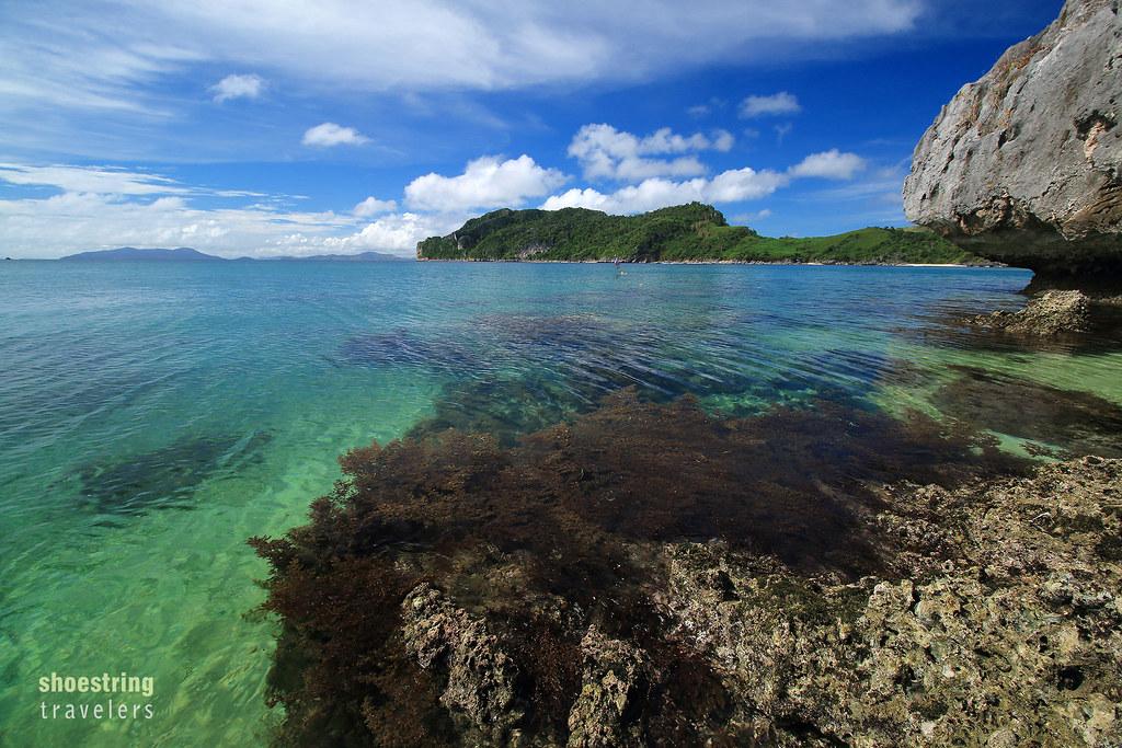 rocks, corals and sea grass, Antonia Beach, Gigantes Sur, Carles, Iloilo