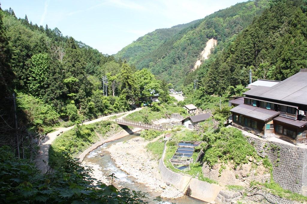Jigokudani Monkey Park (4)