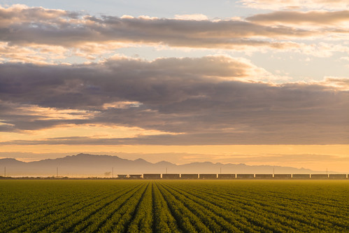 Imperial Valley Sunrise