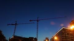 DC Dance of the Cranes 59110
