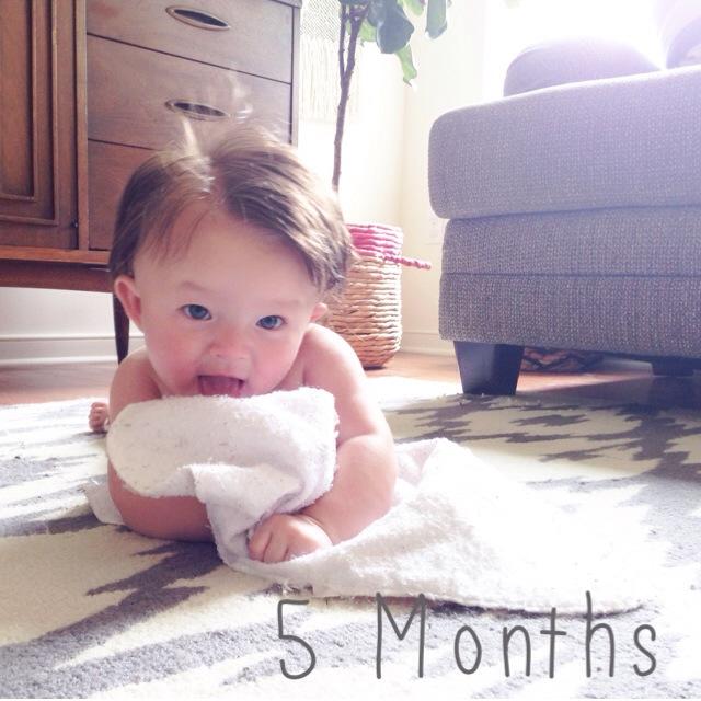 Elle Evergreen: 5 months