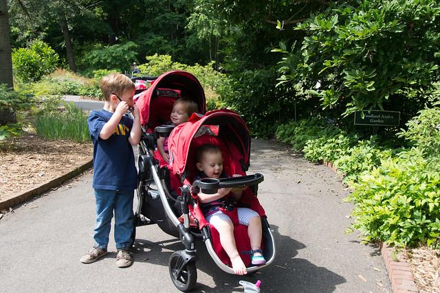 arboretum july9-17