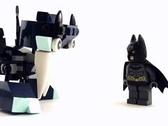 Bat Meets Bat
