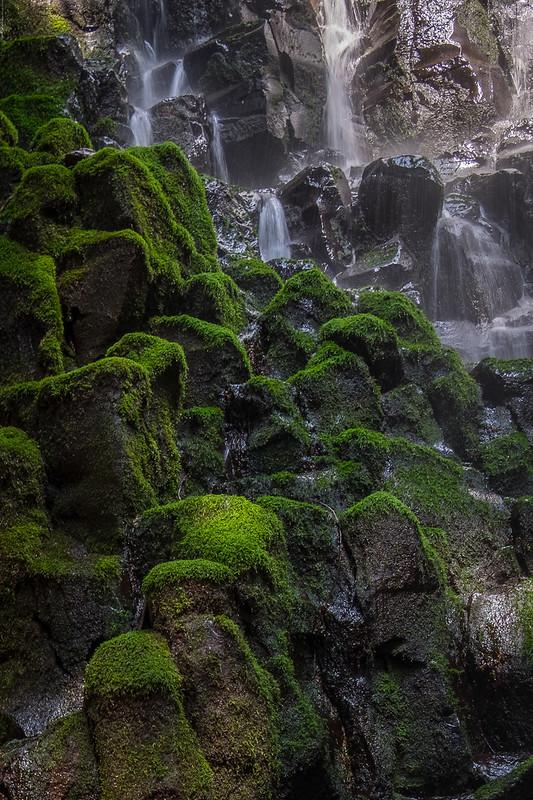 Ramona Falls Moss