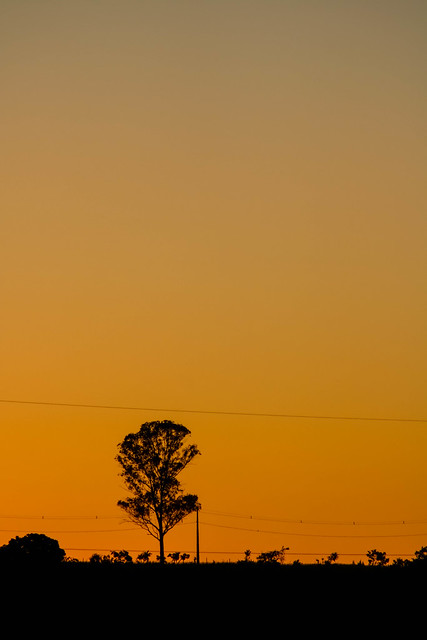 Amanhecer (sunrise/alba), Canon EOS REBEL T6S, Canon EF 75-300mm f/4-5.6 USM